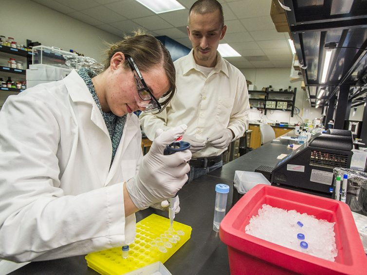 Student looks for better ways to make anti-venom