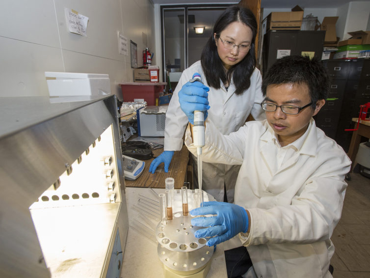 SIU researchers test method to remove contaminants from water