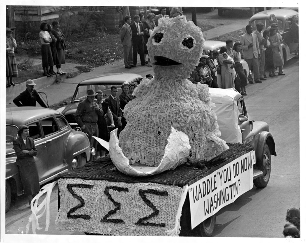 """Picture of the 1952 Sigma Sigma Sigma sorority homecoming parade float featured a chick with the caption """"Waddle' You Do Now Washington?"""""""