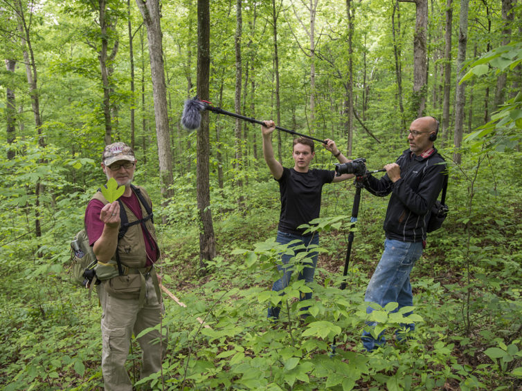 'A walk in the woods' takes on new meaning this summer at SIU